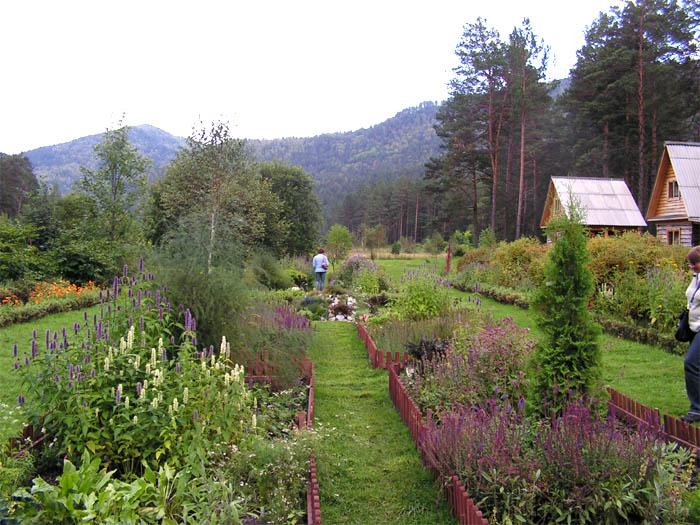Камлак. Ботанический сад