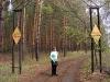 Второй указатель на водопад. По лесной дороге