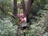 хулиганы лазают по деревьям :)