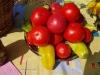соль-илецкие помидоры