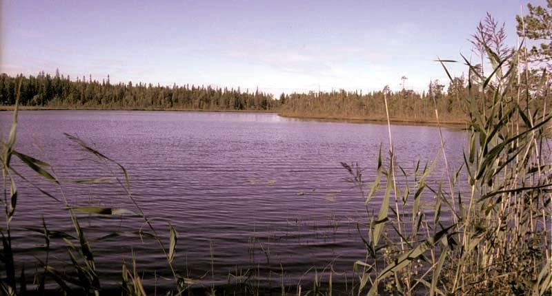 Озеро Абаткуль