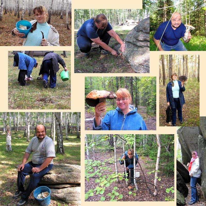 Самые грибные места Челябинской области