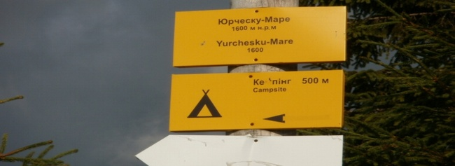koyl-karp2011-016