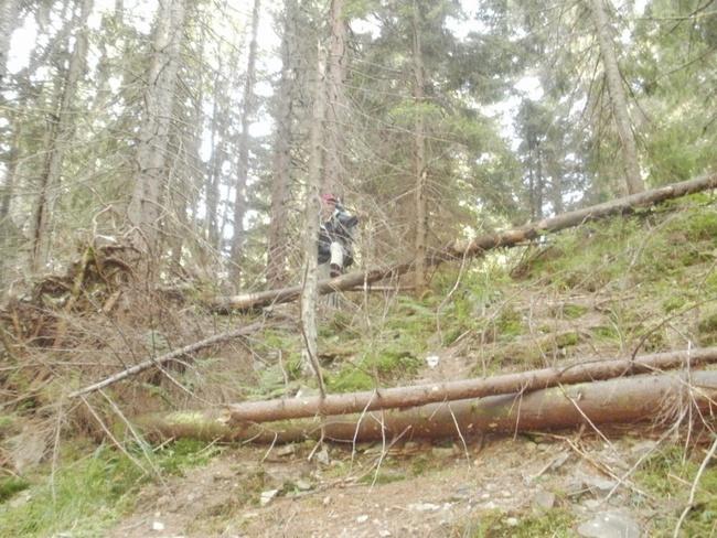 koyl-karp2011-057