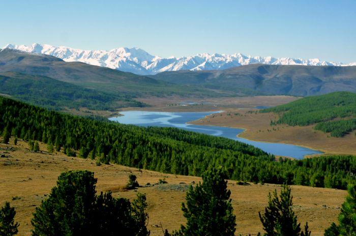 фото с сайта http://www.fishingsib.ru